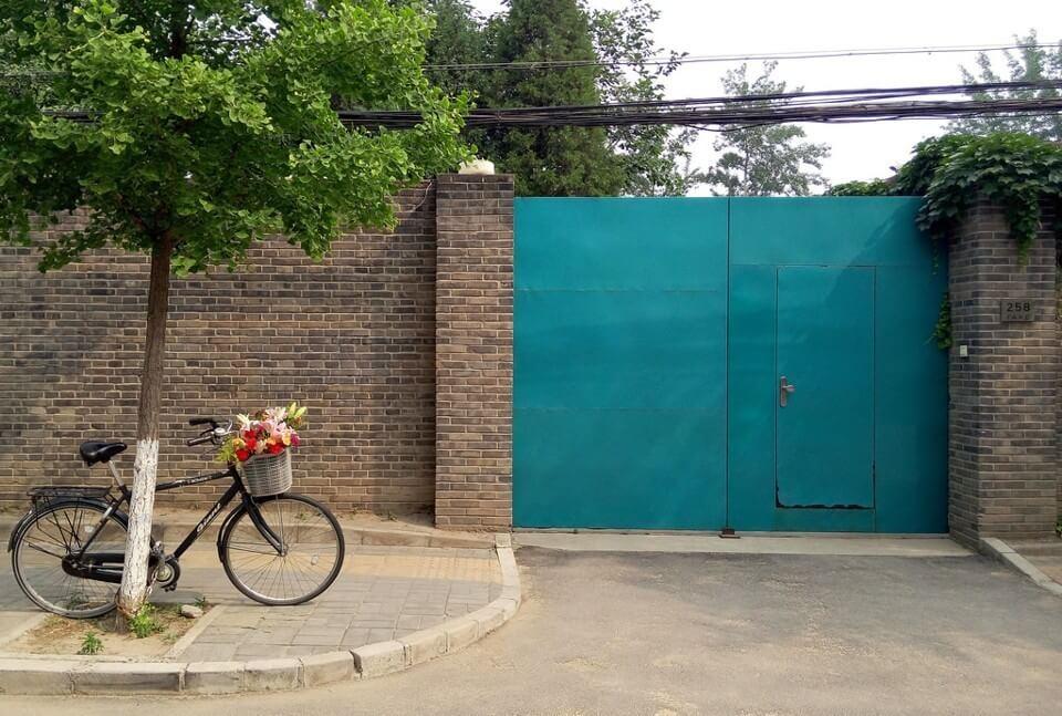 Weiwei bisiklet sepetindeki çiçekli bir sabah